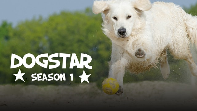 DOGSTAR - Season 1