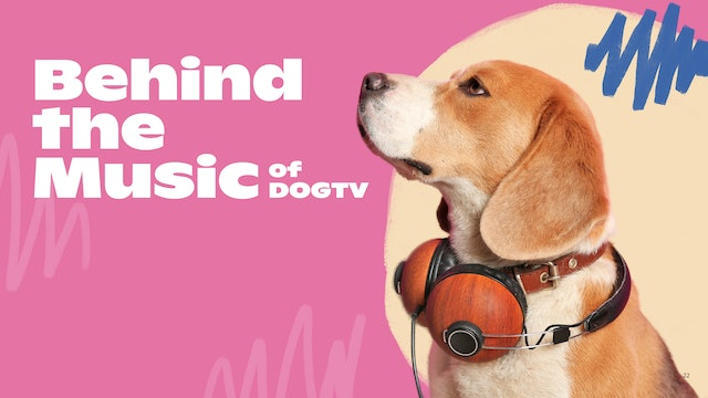 Behind the Music of DOGTV