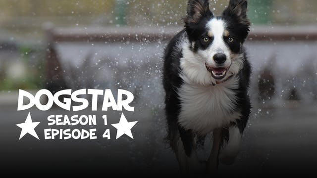 DOGSTAR Season 1 Episode 4