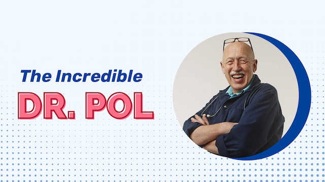 Prime Your Dog for July 4th with Dr. Pol on Nat Geo Wild