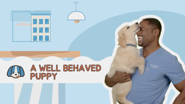 A Well Behaved Puppy is a Happy Puppy