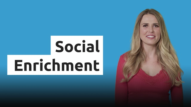 Social Enrichment