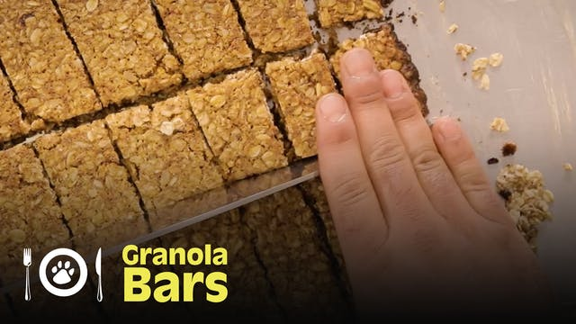 The Dog Chef: Granola Bars