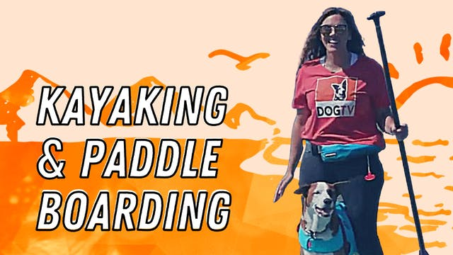 Kayaking and Paddel Boarding