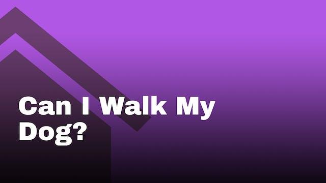 Can I walk my dog?