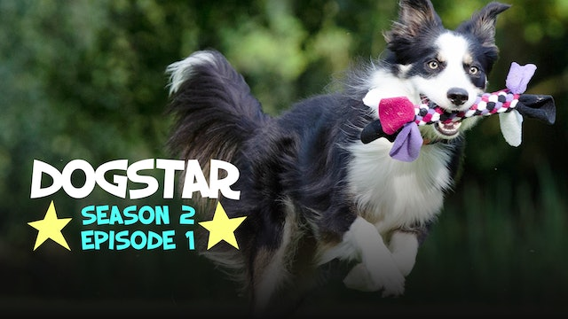 DOGSTAR Season 2 Episode 1