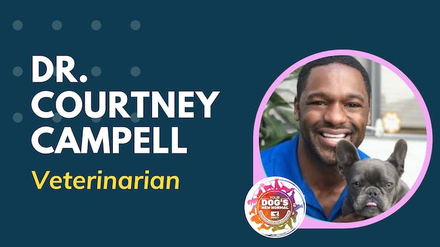 Dr. Courtney Campbell on Pandemic Pup...
