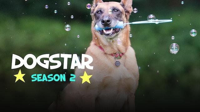 DOGSTAR - Season 2