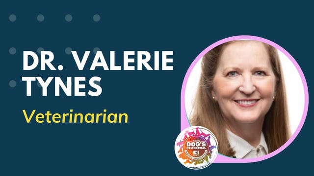 Valerie Tynes on Stress, Fear and Anx...
