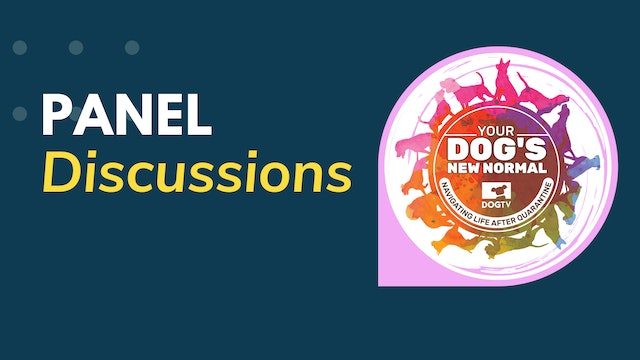 New Normal: Panel Discussions