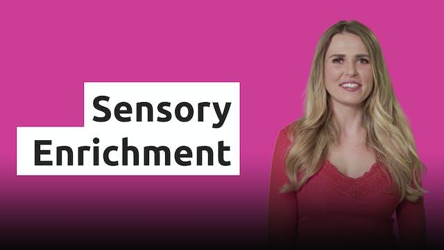 Sensory Enrichment