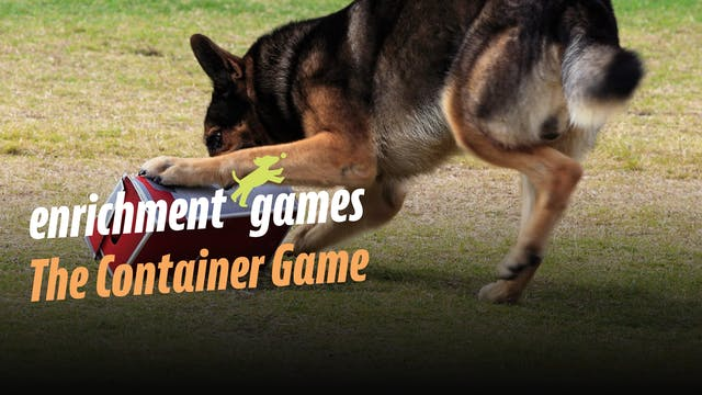 Enrichment: The Container Game
