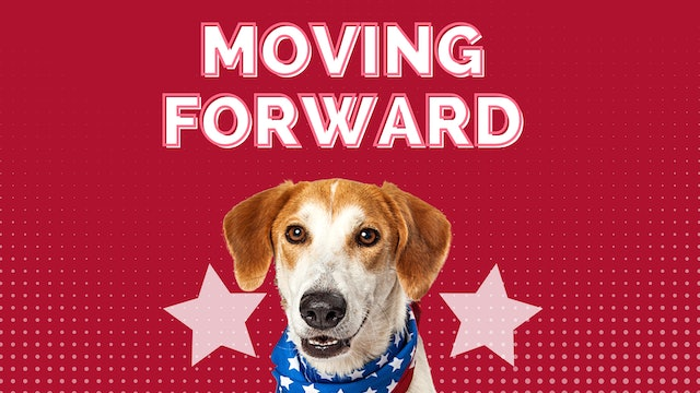 Your Dog's New Normal Panel Discussion: Moving Forward