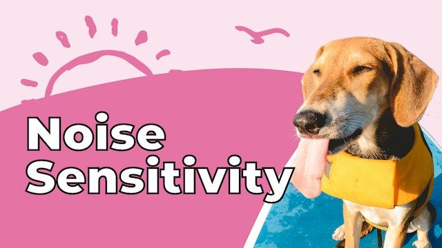 Nosie Sensitivity
