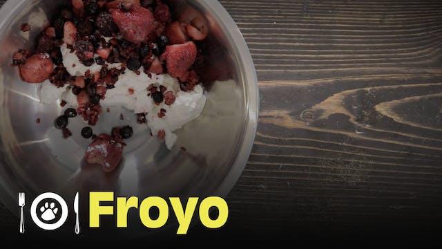 The Dog Chef: Frozen Yogurt