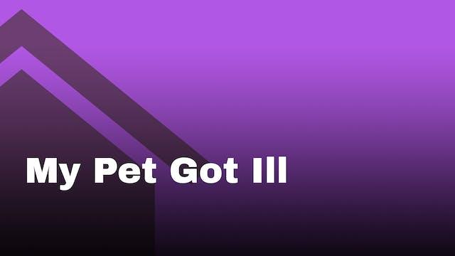 My pet got ill