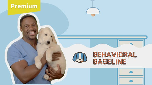 Behavioral Baseline
