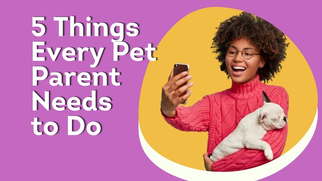 5 Things Every Dog Parent Really Needs To Do