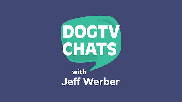 DOGTV Chats: Dr Jeff Werber