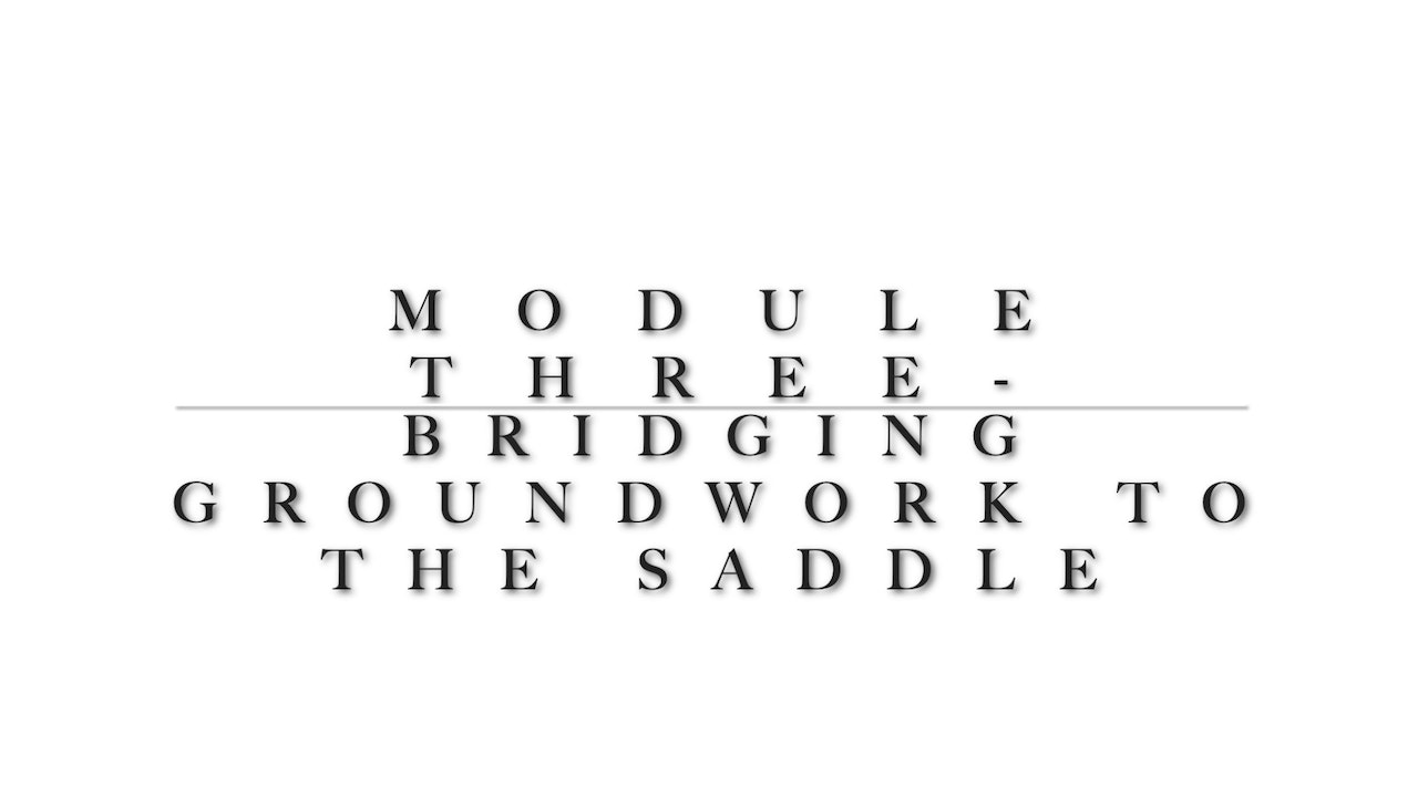 Module 3 - Connecting Ground Training into the saddle