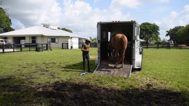 Nervous Horse Trailer loading part 3