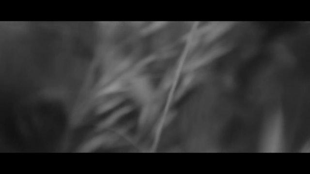 AFIE - Camera Tests Reel