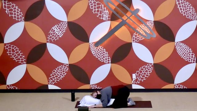 60 Minute Yin w/ Emily (Livestream fr...