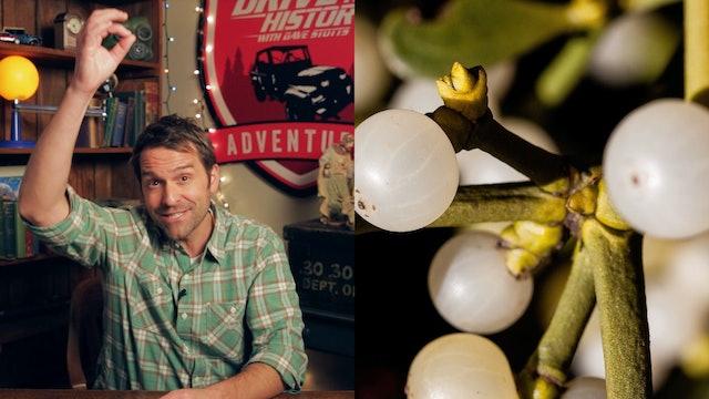 History of Christmas Traditions – Mistletoe