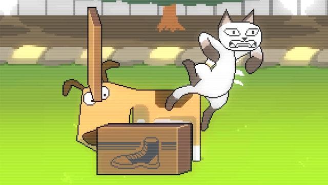 Cat Vs. Dog: Dog Wins