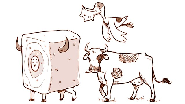 Morning Drawfee - Realistic Cows