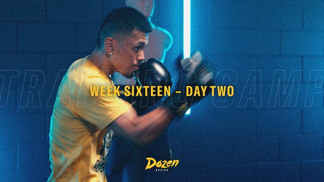 Week 16 – Day 2