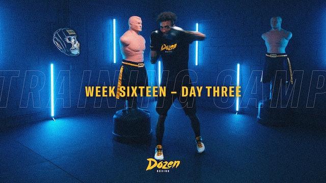 Week 16 – Day 3