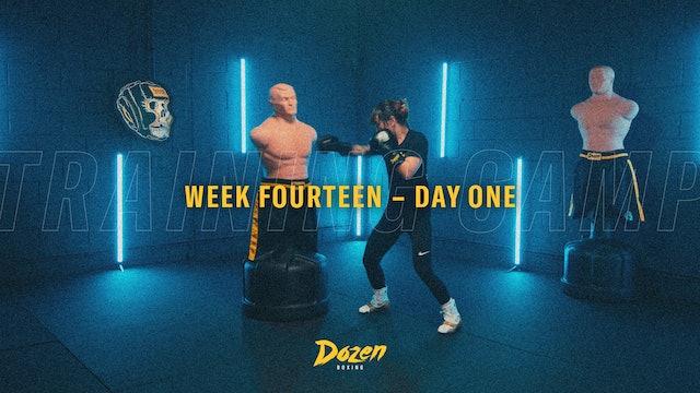Week 14 – Day 1