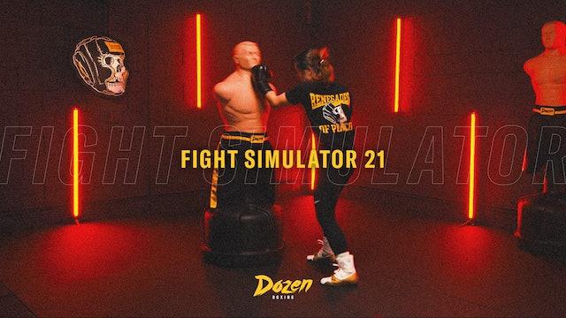 Week 21 – Day 5: Fight Simulator 21