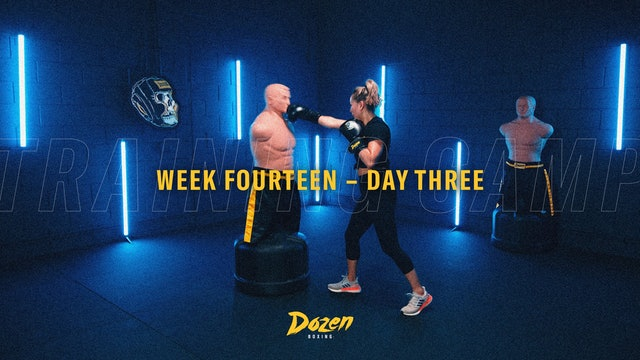 Week 14 – Day 3