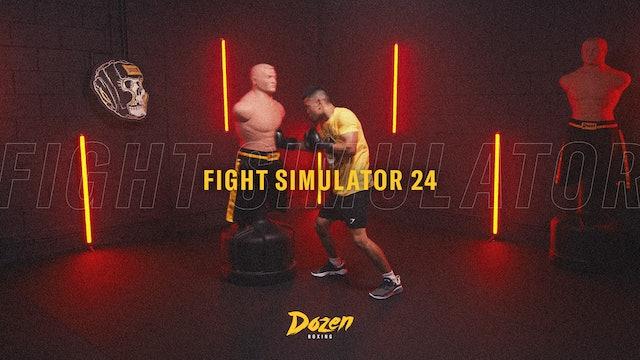 Week 24 – Day 5: Fight Simulator 24