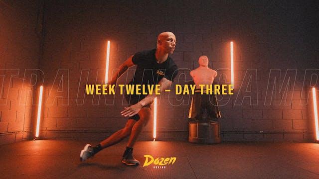 Week 12 – Day 3