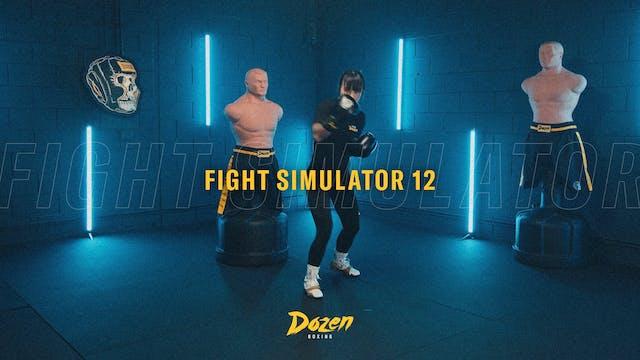 Week 12 – Day 5: Fight Simulator 12