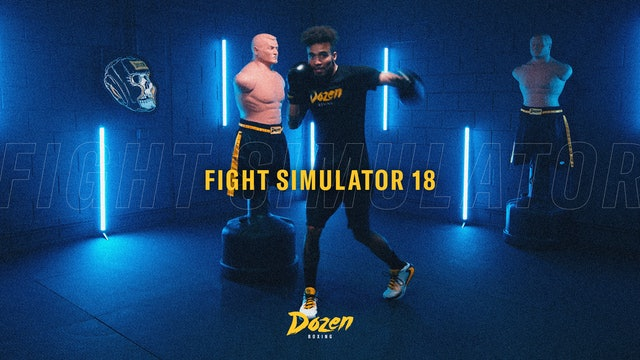 Week 18 – Day 5: Fight Simulator 18