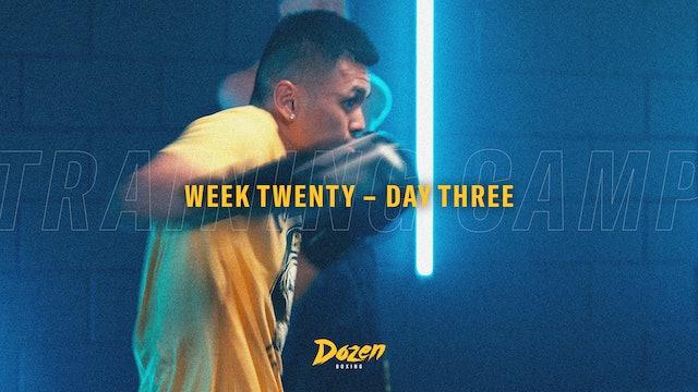 Week 20 – Day 3