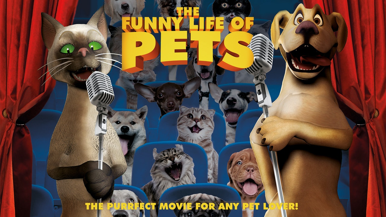 The Funny Life of Pets