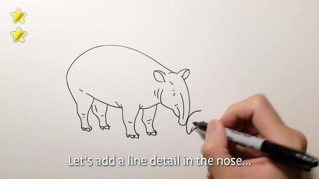 Zoodles - Tapir