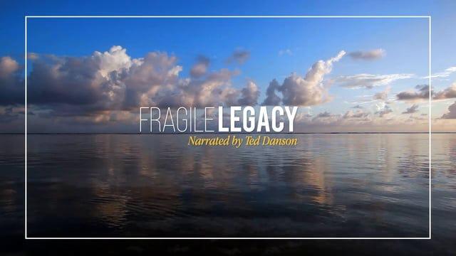 Fragile Legacy