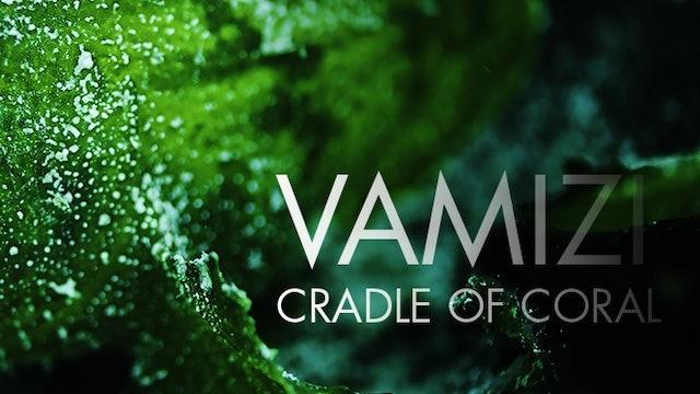 Vamizi: Cradle of Coral