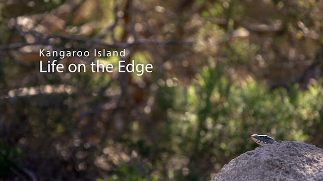 Kangaroo Island: Life on the Edge