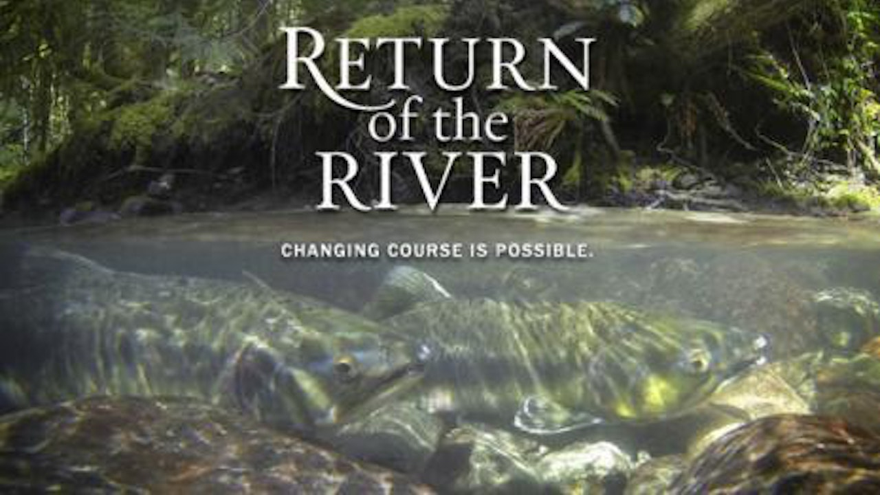 Return of the River