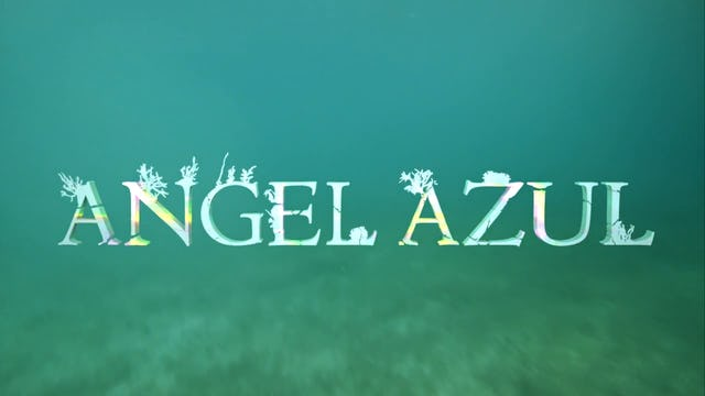 Angel Azul