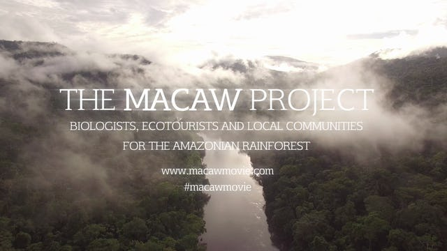 The Macaw Project