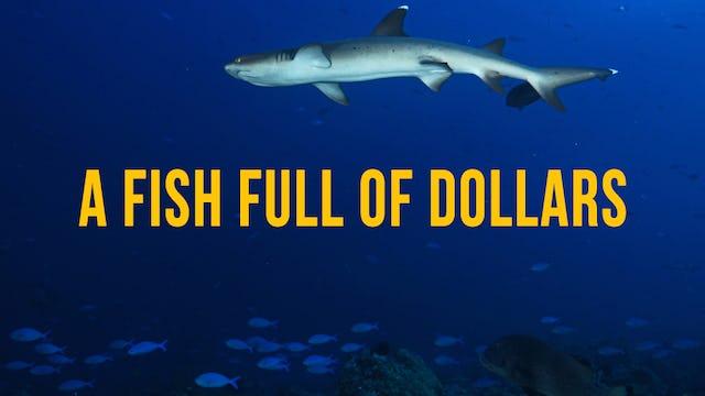 A Fish Full of Dollars