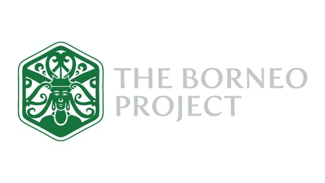 The Borneo Project